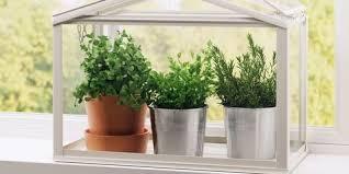 Indoor Herb Garden Kit Indoor Herb Garden Kit With Grow Light All The Best Garden In 2017