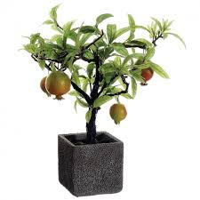 14 inch pomegranate tree in cement pot closeout lvp184 re gr