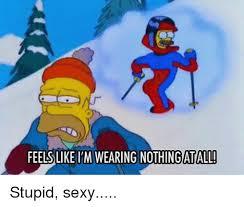 Stupid Sexy Meme - 25 best memes about stupid sexy stupid sexy memes