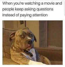 Annoyed Dog Meme - annoyed pupper meme by thugpopsicle memedroid