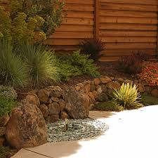 san diego backyard landscape design pool tropical with natural
