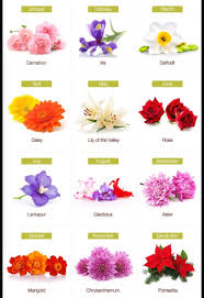 flower of the month birth month flowers tattoos birth month flowers