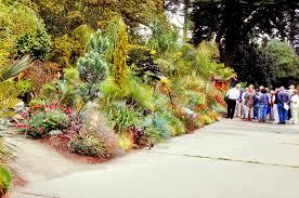 San Francisco Flower Garden by San Francisco Botanical Garden Entry Planet Horticulture