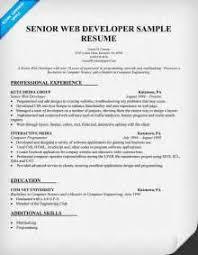 Senior Web Designer Resume Sample by Senior Web Designer Resume Sample