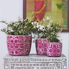 decor fresh decorative planting pots beautiful home design
