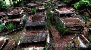 Old Ford Truck Graveyard - digital trends what really happened to belgium u0027s infamous car