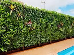 vertical garden for home fence design 4 home ideas