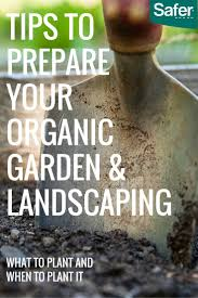 Insecticide For Vegetable Garden by 53 Best Org Garden Pest Control Images On Pinterest Garden