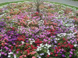 paul cummins the english flower garden the realist