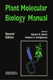 100 solutions manual bioprocess engineering second edition