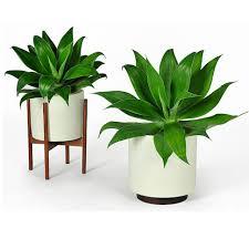 plant stand impressive plant standsor large pots pictures ideas
