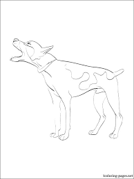 coloring page of a rat rat coloring pages whereisbison com