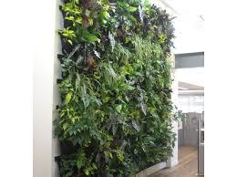 wall herb garden