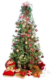 grower direct traditional christmas flowers information about