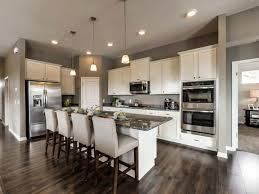 Kitchens Designs Kitchen Exles Gallery Rapflava