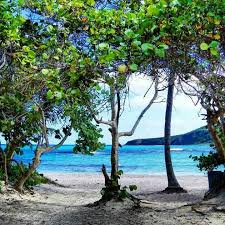 40 best places to visit in puerto rico images san
