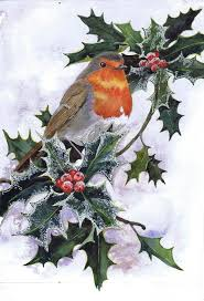 216 best robin images on pinterest robins robin redbreast and