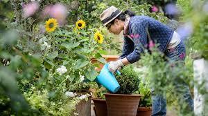 flower gardening 101 growing a garden 101 wholesale nursery tree nursery online
