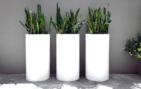 outdoor and patio three white tube tall outdoor planters on