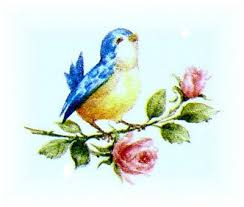 best 25 bluebird tattoo ideas on pinterest finch tattoo robin