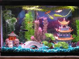 aquarium decorations buildings trellischicago