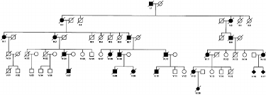 family tree for family 105 solid symbols are affected members open