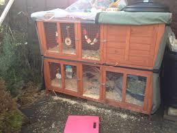 Rabbit Hutch Set Up Rabbits Natsbunnies