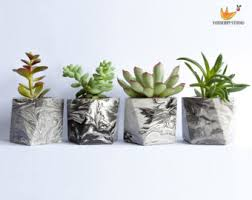 planter for succulents owl lover gift for her succulent planter owl planter cactus
