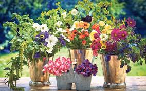 grow your own cut flowers telegraph