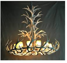 Chandelier For Sale Deer Horn Chandelier The Aquaria