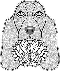 335 free printable coloring pages adults images