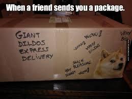 Funniest Doge Meme - doge meme when a friend sends you a package funny