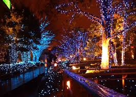 Botanical Gardens Ga Southern Mamas Archive December Nights Lights