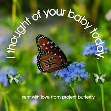 project butterfly for baby and infant loss home facebook