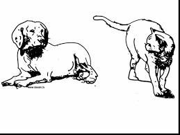 excellent dog cat coloring pages alphabrainsz net