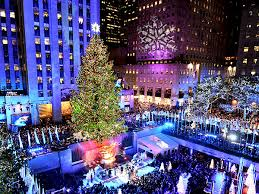 tree lighting new york rainforest islands ferry