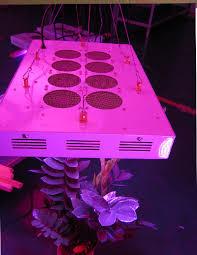 hydroponic led grow lights why use led grow lights for hydroponics gardening led grow light