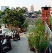 rooftop garden design roof gardens archives cynthia gillis garden design