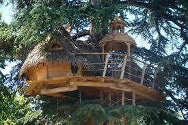 chambre d hote cabane dans les arbres cabane pons location cabane pons charente maritime 11442