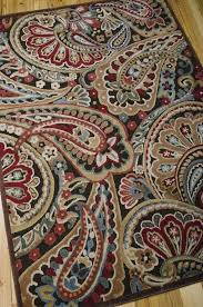 Paisley Area Rugs Paisley Area Rugs Spectacular Design Marvelous Graphic Illusions