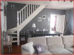 coussin sur canap gris peinture gris blanc salon avec canap coussin 35408 peinture salon