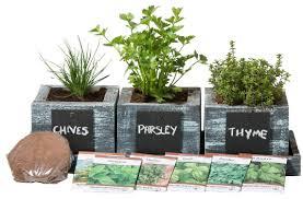 indoor herb garden kits a great gardener gift family food garden