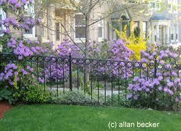 lofty design ideas perennial flower garden design plans t8ls com