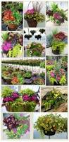 Flower Planter Ideas by 40 Window And Balcony Flower Box Ideas Photos Repeating