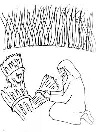 Bible Story Coloring Page For The Parable Of The Wheat And The Children Bible Stories Coloring Pages