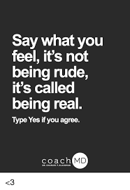 Say What You Meme - say what you feel it s not being rude it s called being real type
