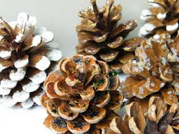 Natural Christmas Tree Decorations With Pine Cones Dried Flower