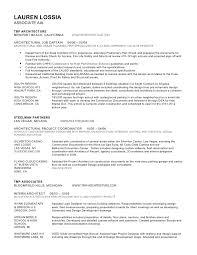 urban planner resume sr director of it software development