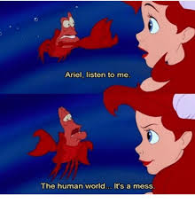 Ariel Meme - ariel listen to me the human world it s a mess ariel meme on me me