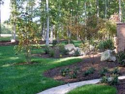 Tree Ideas For Backyard Backyard Landscaping Ideas And Ideas